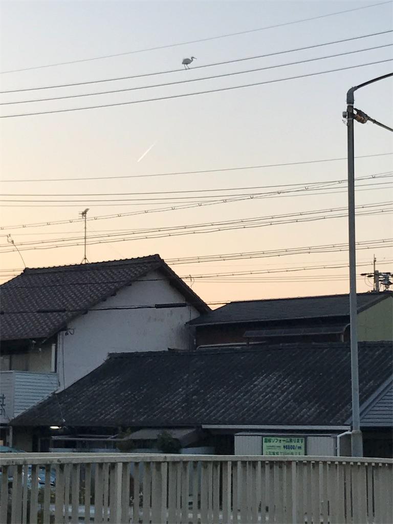 f:id:smart-kinako:20161221163829j:image