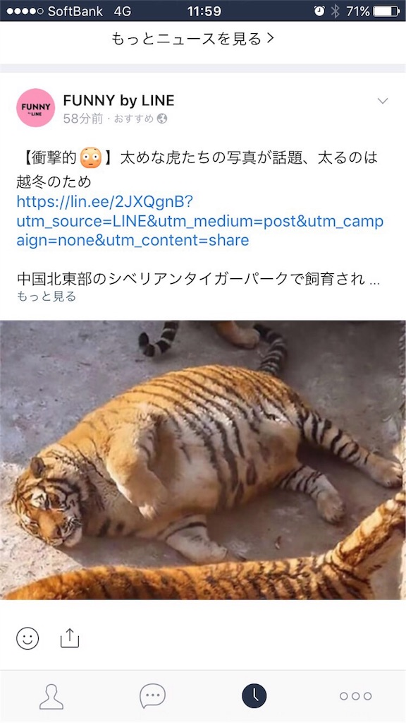 f:id:smart-kinako:20170210120246j:image