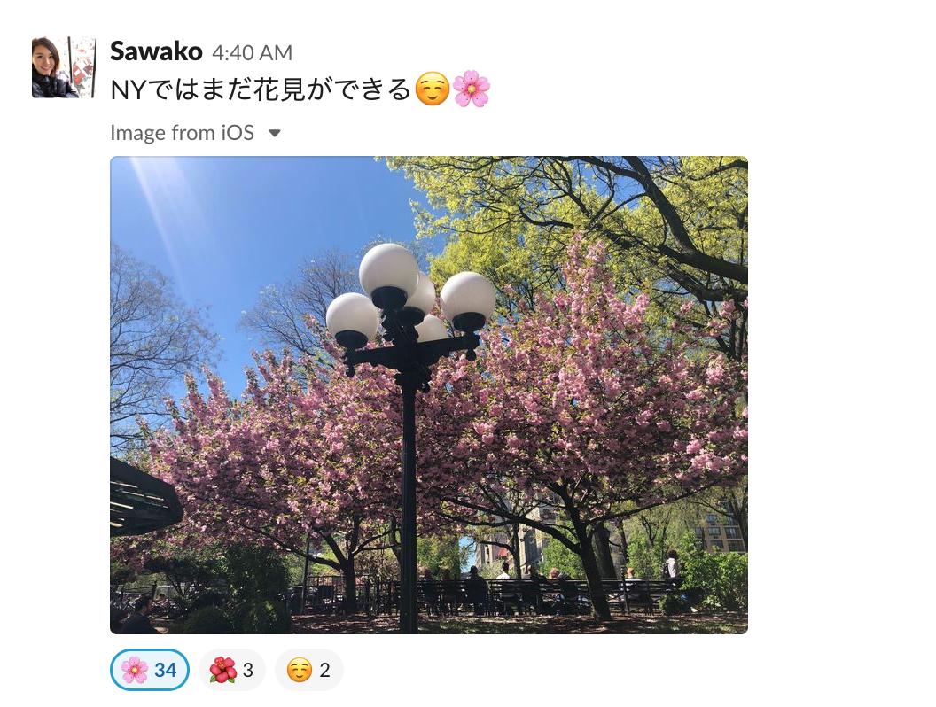 f:id:smartnews_jp:20190509111356p:plain
