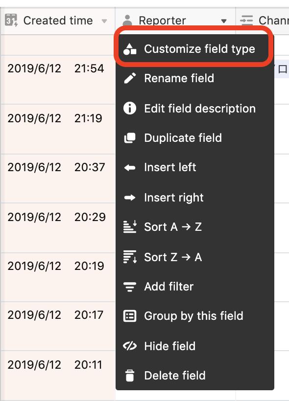 Customize field typeを選択