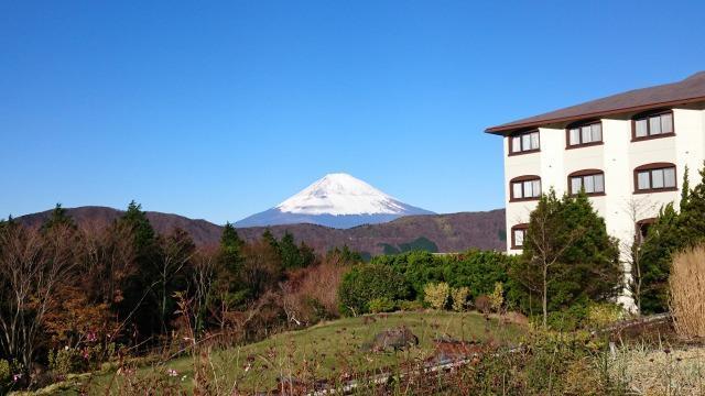 ホテルグリーンプラザ箱根からの富士山