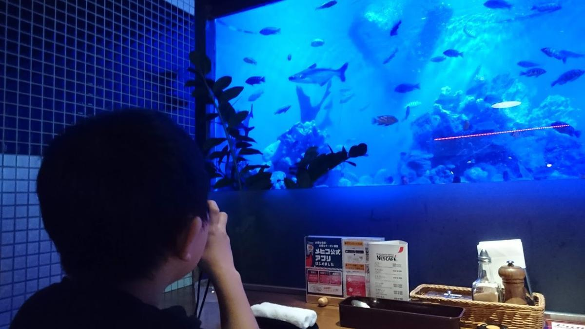 シーフードレストランメヒコ 水槽