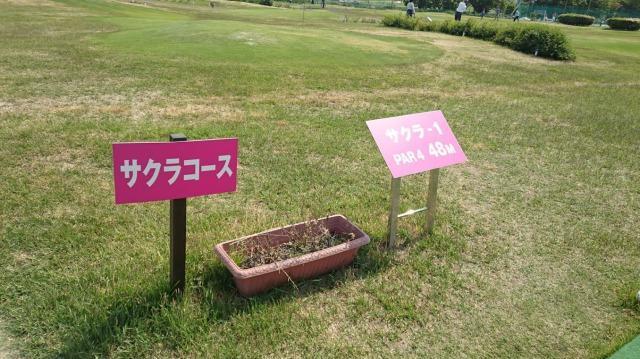 荒川・扇河川健康公園 コース
