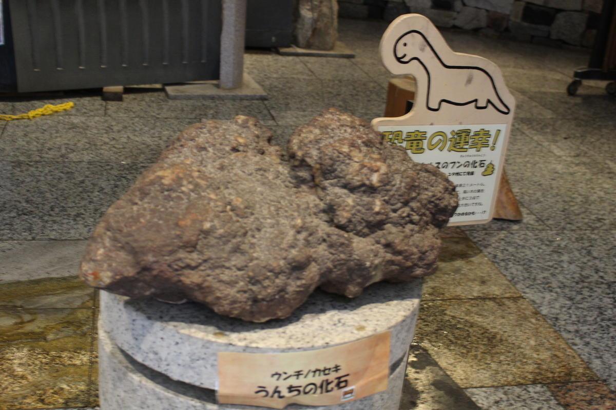 ストーンミュージアム 恐竜の化石