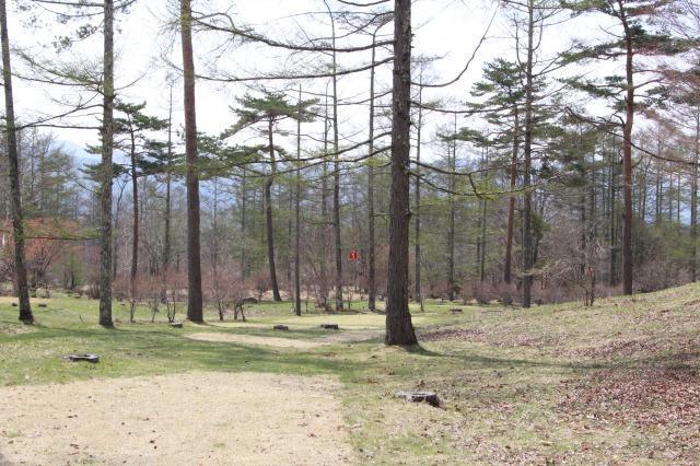 清里の森 パークゴルフ