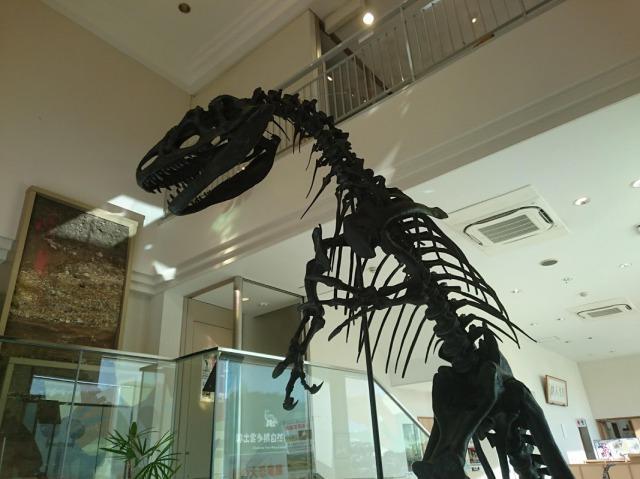 奥出雲多根自然博物館 アロサウルス