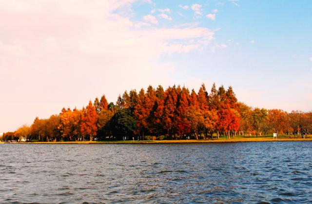 水元公園 紅葉