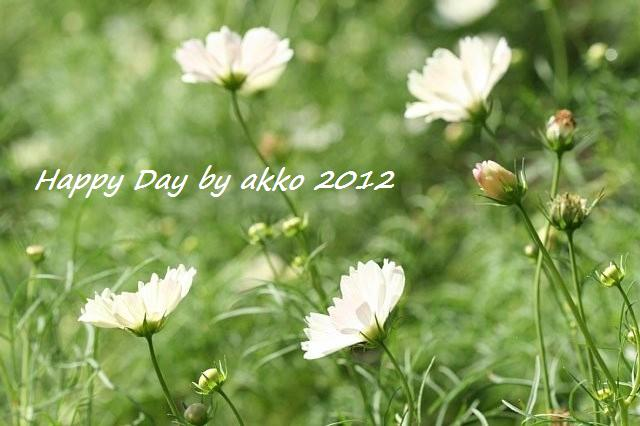 f:id:smileakko:20121009092938j:image
