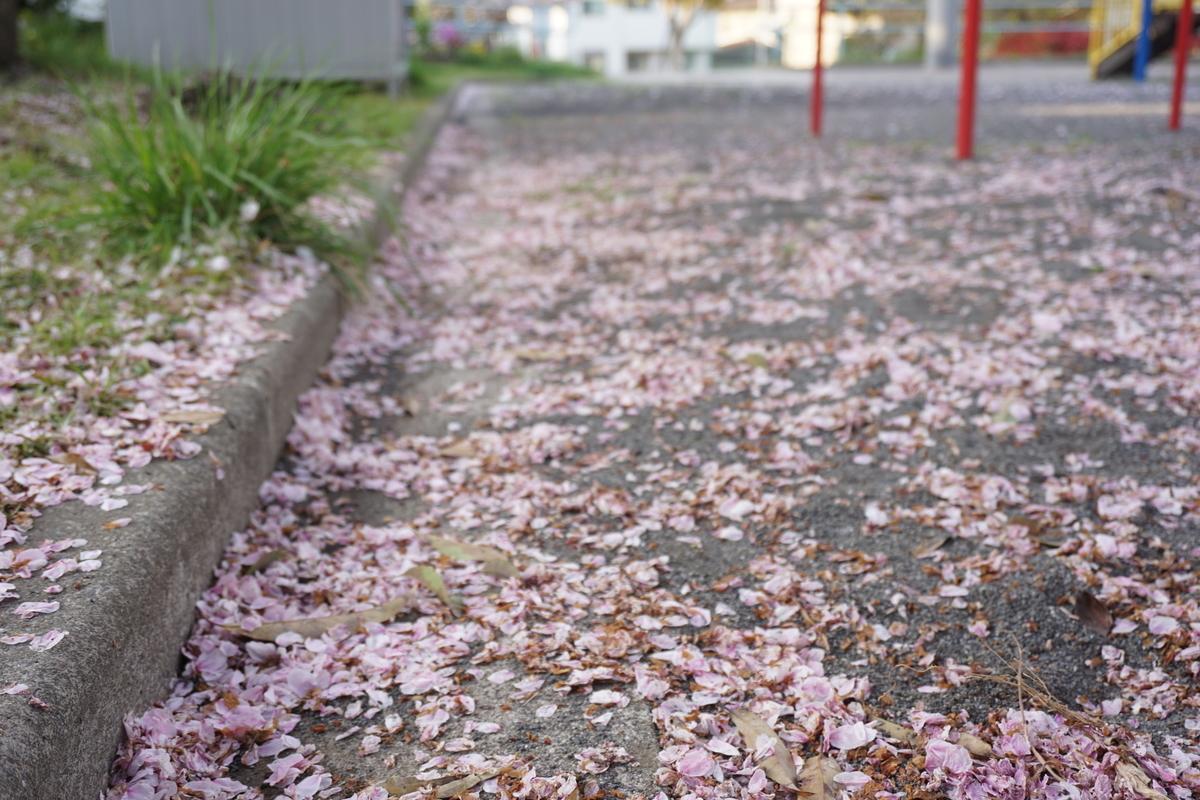 ピンク色の道路