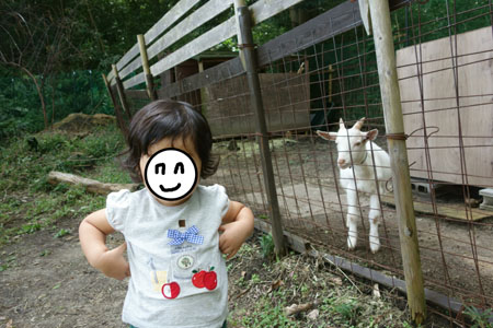 f:id:sn1nsmr:20171012174821j:image