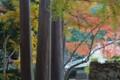 『京都新聞写真コンテスト五個荘紅葉谷』