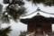 『京都新聞写真コンテスト雪中浮御堂その2』
