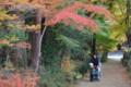 『京都新聞写真コンテスト湖南長寿寺の秋』