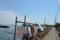 『京都新聞写真コンテスト琵琶湖沖島春の風景その1 』
