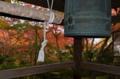 京都新聞写真コンテスト 燃える鐘楼