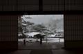 雪の天龍寺