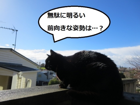 f:id:sneezycat:20160921113518j:plain