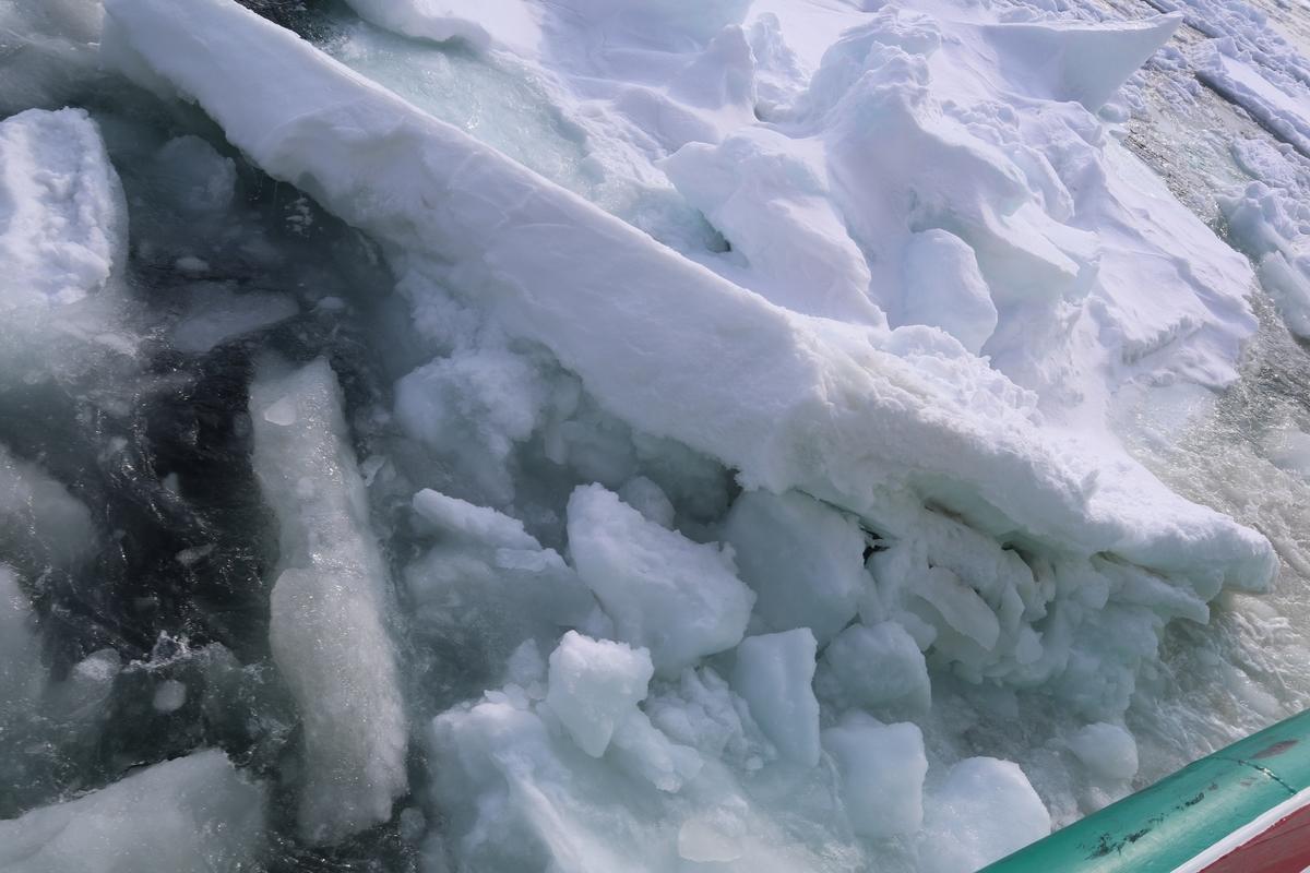 f:id:snow683:20201216173511j:plain