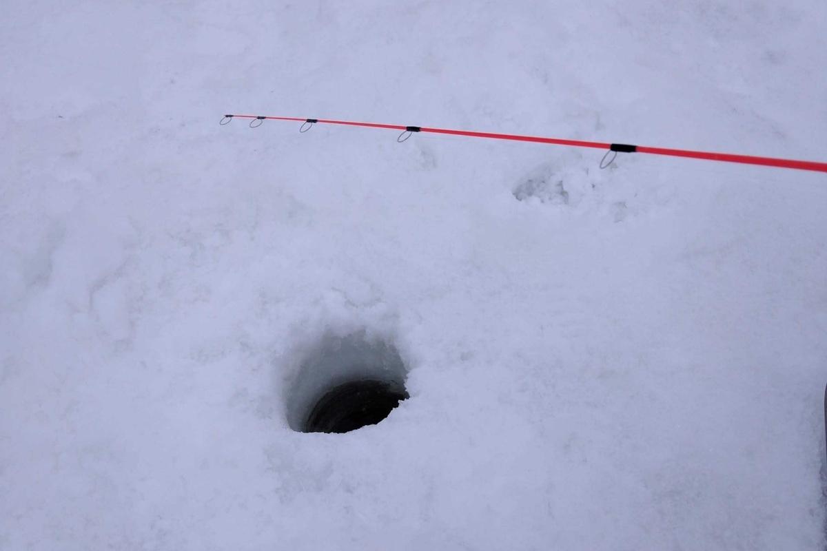 f:id:snow683:20201216173655j:plain