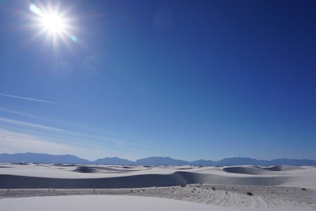 f:id:snowboarderblog:20190309152847j:image
