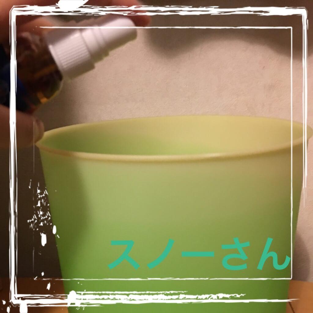 f:id:snowcrystal_6:20170401102944j:plain
