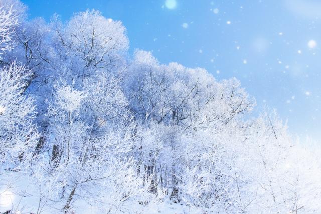 f:id:snowgies:20181101000216j:plain