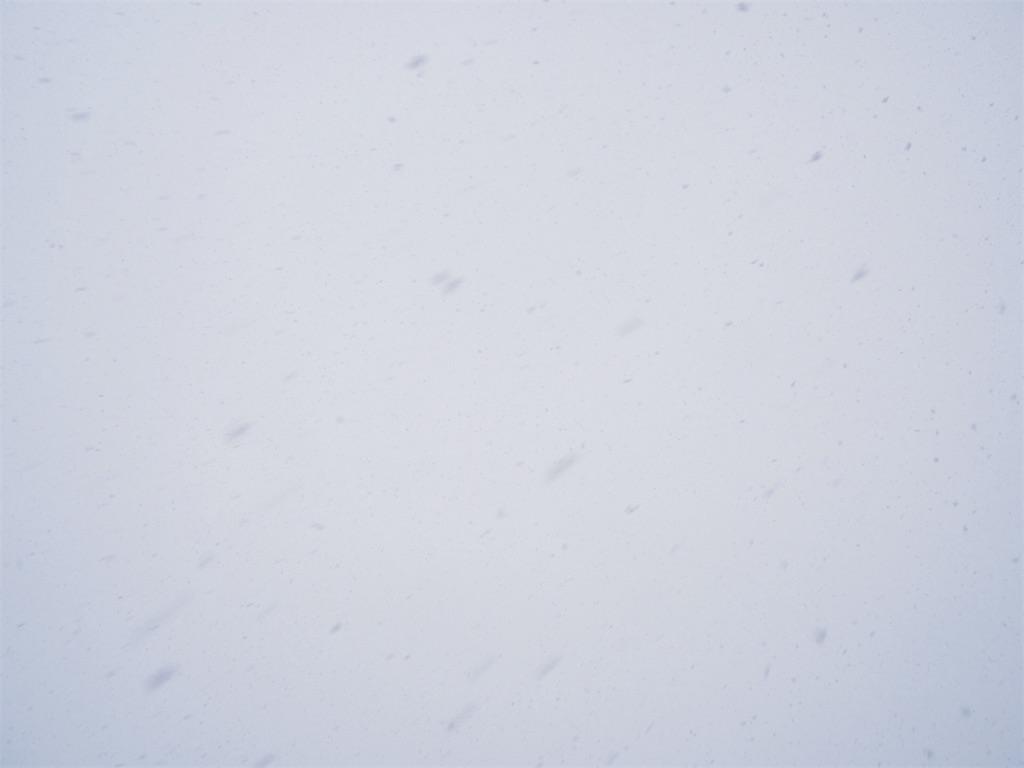 f:id:snowout:20210110205334j:image