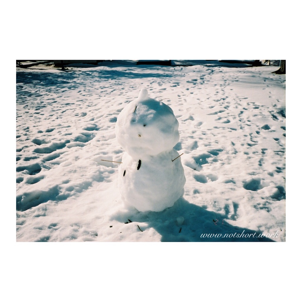 f:id:snowout:20210224153305j:image