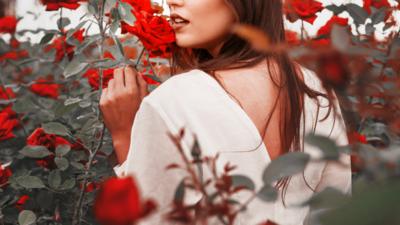 バラの持つ力