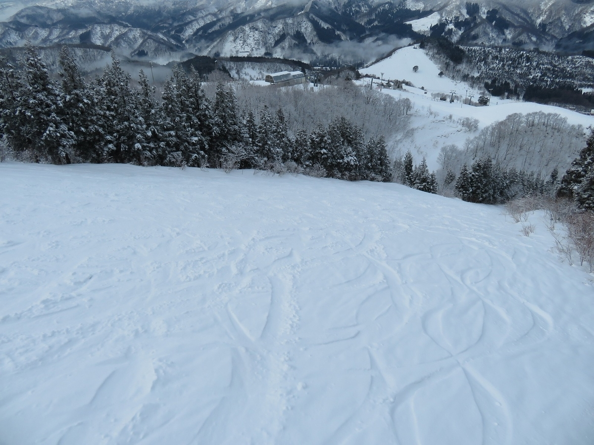 f:id:snowwave555:20210710072959j:plain