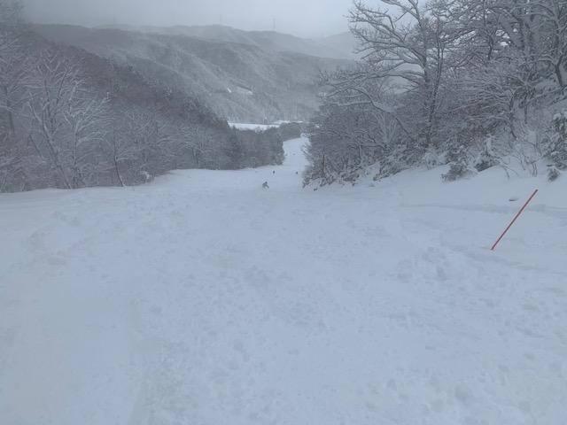 f:id:snowx:20210106203244j:plain