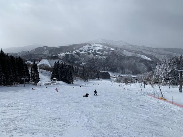f:id:snowx:20210206064846j:plain