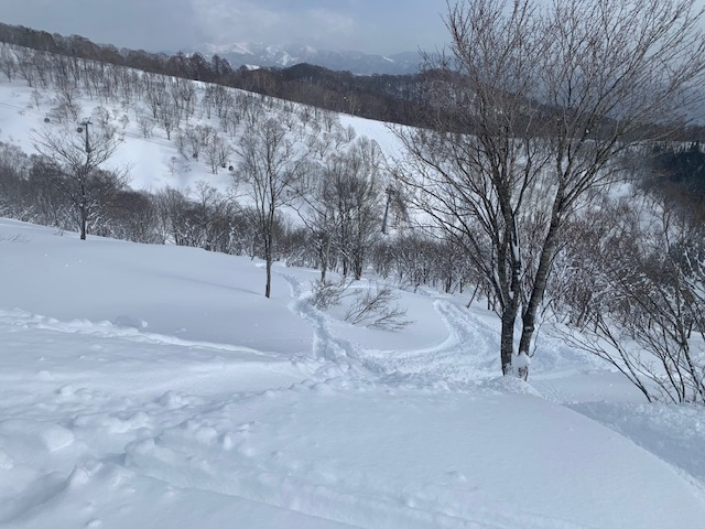 f:id:snowx:20210206065141j:plain