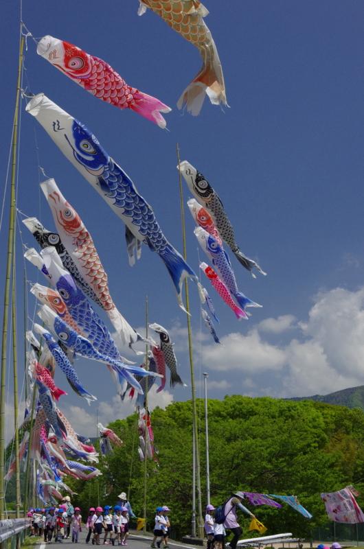 京都新聞写真コンテスト楽しい遠足