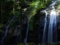 京都新聞写真コンテスト 清らかな滝音