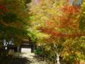 京都新聞写真コンテスト 秋の山門