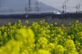 京都新聞写真コンテスト春の田園風景