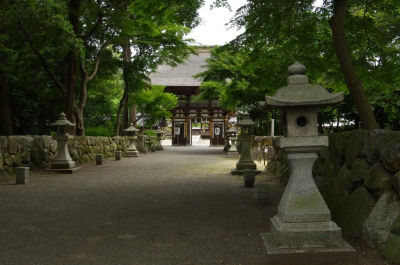 京都新聞写真コンテスト深緑の境内