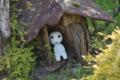 京都新聞写真コンテスト 木霊の家