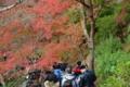 京都新聞写真コンテスト 紅葉トンネル大渋滞