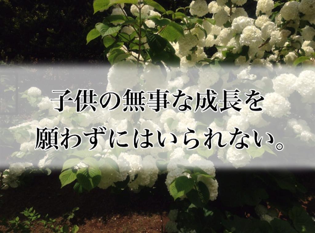 f:id:sobakasukarashimie:20190513001831p:image
