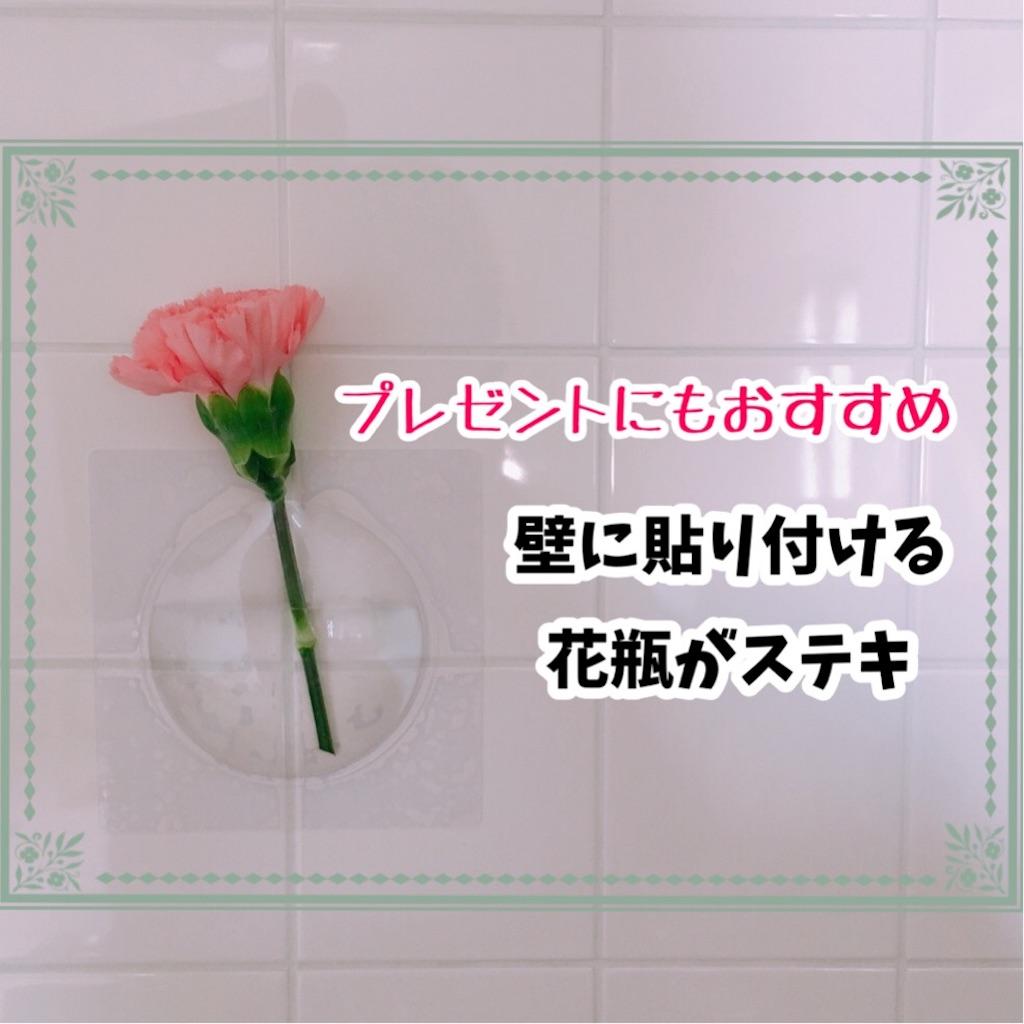 f:id:sobakasukarashimie:20190521130022j:image
