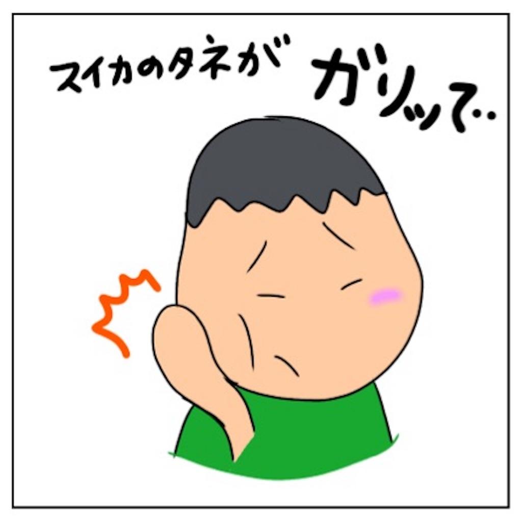 f:id:sobakasukarashimie:20190527120727j:image