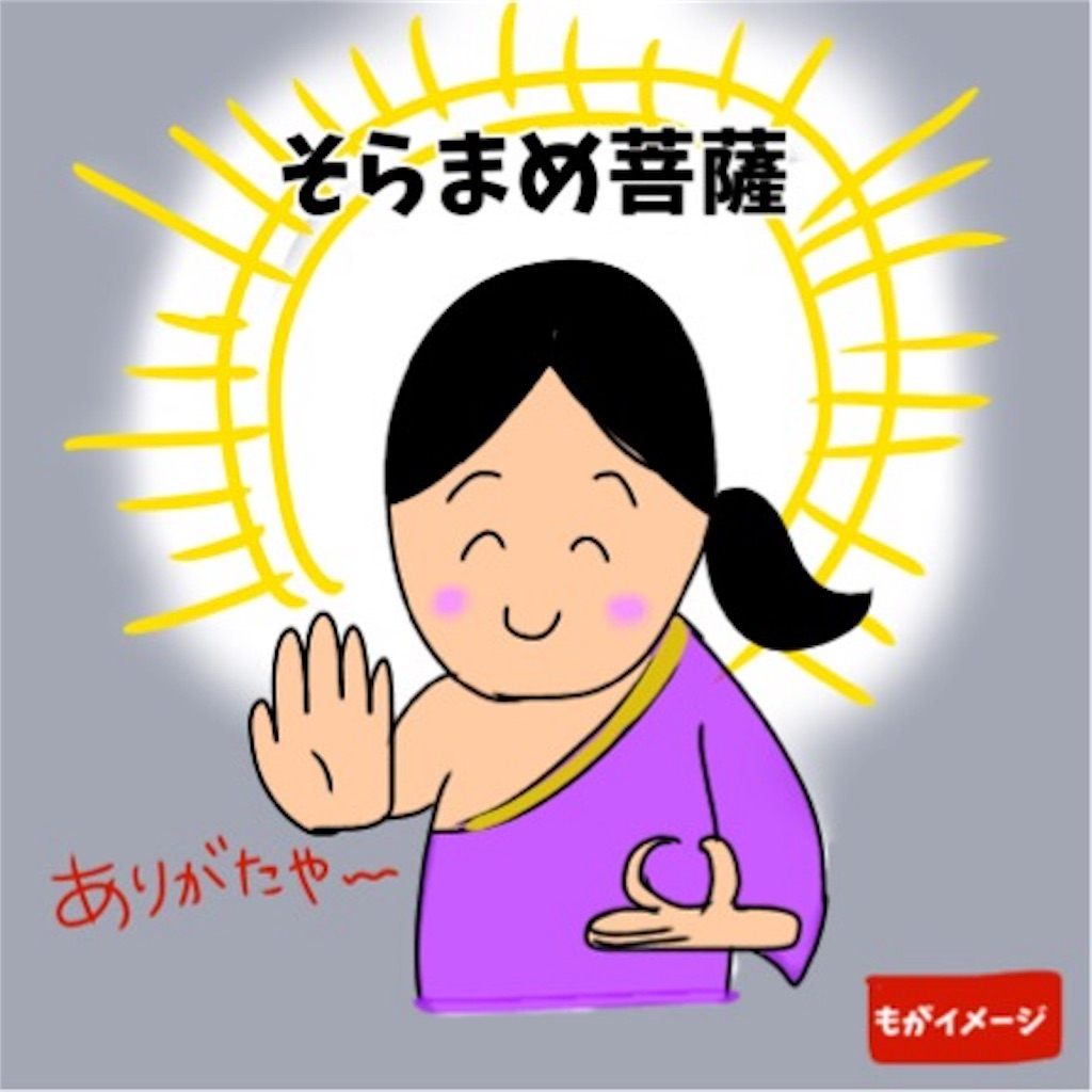 f:id:sobakasukarashimie:20190604230804j:image