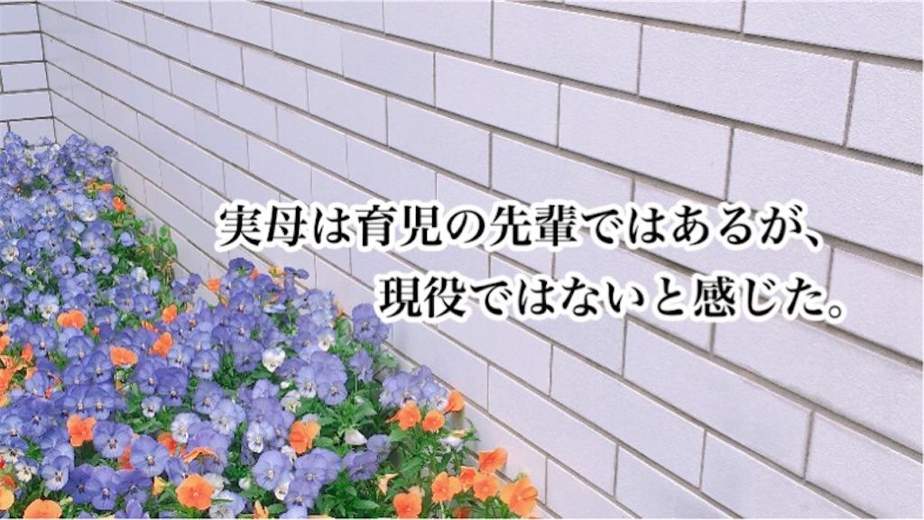f:id:sobakasukarashimie:20200107014223j:image