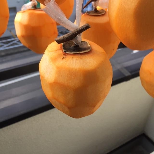 一つの柿に注目していきます