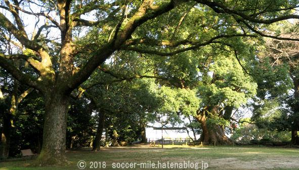 f:id:soccer-mile:20180807082903j:plain