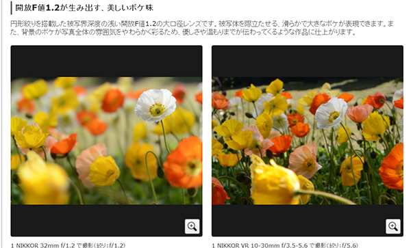 f:id:softcandy:20130515102507j:image