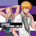 [bleach]bleach5