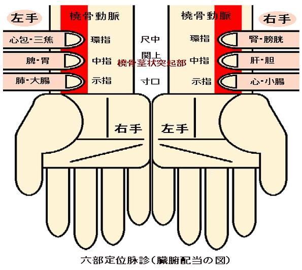 f:id:sohachiacupuncture:20180706095405p:plain